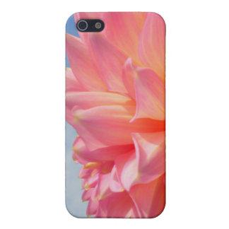Rosa Dahlie-Himmel iPhone 5 Cover