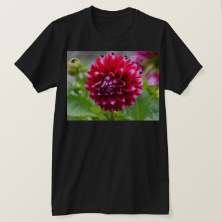 Rosa Dahlie T-Shirt