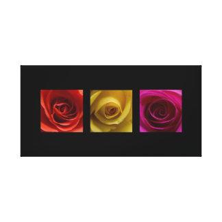 Rosa des orange Gelbs der Triptychon-Rosen Leinwanddruck