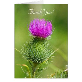 Rosa Distel-Blume danken Ihnen Grußkarte