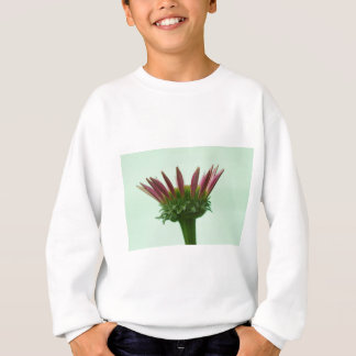 Rosa Echinacea Coneflower Blüten-Hintergrund Sweatshirt