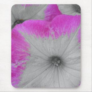 Rosa eingefaßte Schwarzweiss-Petunien Mauspad
