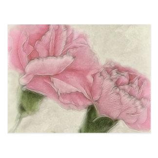 Rosa Farbe der Gartennelken-3 mit Sepia Postkarten