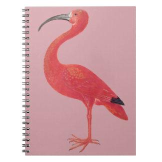 Rosa Flamingo - Kunst-Notizbuch Spiral Notizblock