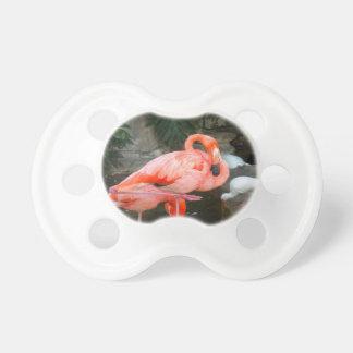 Rosa Flamingo Schnuller