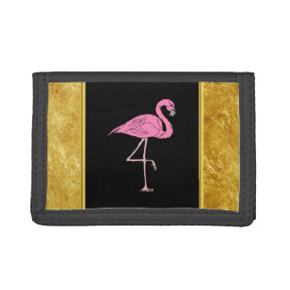 Rosa Flamingos stehend mit