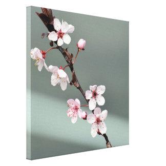 Rosa Frühlings-Blüten Gespannter Galerie Druck