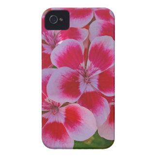 Rosa Frühlingsblüten iPhone 4 Hülle
