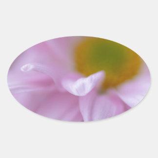 Rosa Gänseblümchen Ovaler Aufkleber