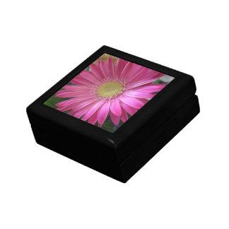 Rosa Gänseblümchen-Prinzessin Geschenkbox