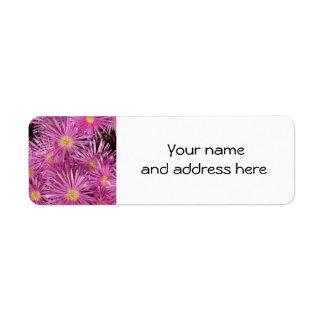 Rosa Gänseblümchen-Rücksendeadressen-Aufkleber