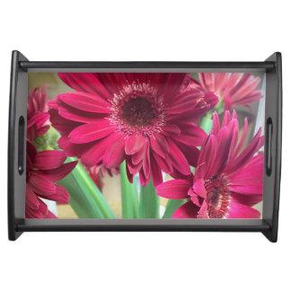 Rosa Gänseblümchen Tablett