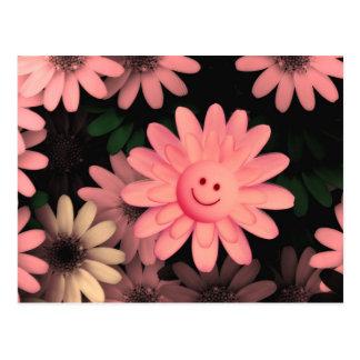 Rosa Gänseblümchenpostkarte Postkarte