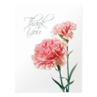 Rosa Gartennelke danken Ihnen Postkarte