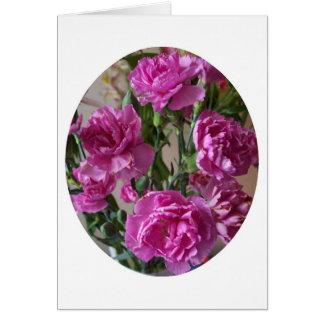 Rosa Gartennelken Karte