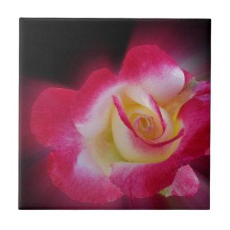 rosa gelbe Rose Keramikfliese