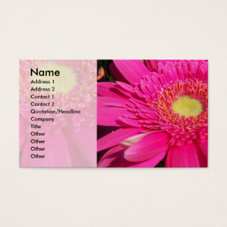 Rosa Gerber Gänseblümchen Visitenkarte