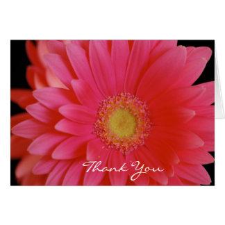 Rosa Gerbera-Gänseblümchen danken Ihnen zu Karte