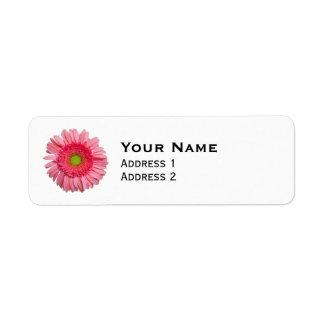 Rosa Gerbera-Gänseblümchen Kleiner Adressaufkleber