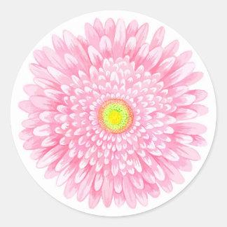 Rosa Gerbera-großer glatter runder Aufkleber