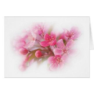 rosa Hartriegel-Blumen Karte