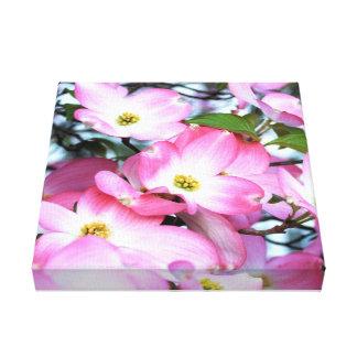 Rosa Hartriegel-Blumen Leinwanddruck