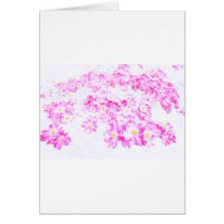 Rosa Hartriegel-Blüte Karte