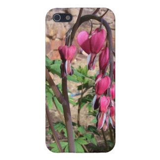 Rosa Herz-Blumen in der Blüte iPhone 5 Etui