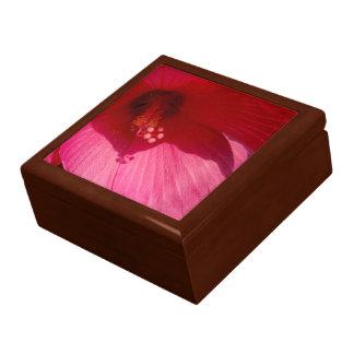 Rosa Hibiskus-Blumen-Fliesen-Geschenkboxen, Schmuckschachtel