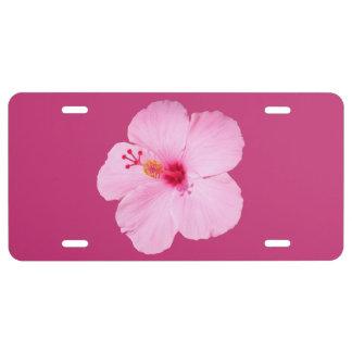 Rosa Hibiskus-tropische Blume US Nummernschild