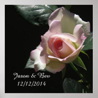 Rosa Hochzeits-Rose Poster