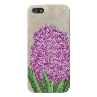 Rosa Hyazinthen-Blumen-Kunst Hülle Fürs iPhone 5