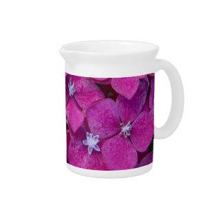 Rosa Hydrangea-Blumen Krug