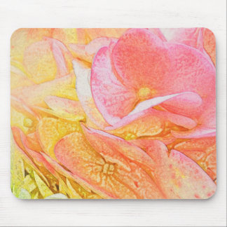 Rosa Hydrangea-Glühen Mousepad