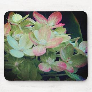 Rosa Hydrangea mit Blumen Mousepad