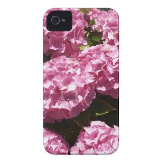 Rosa Hydrangeas-Fotografie iPhone 4 Hülle