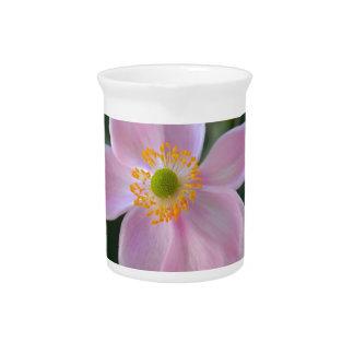 Rosa japanische Anemonen-Blume Krug