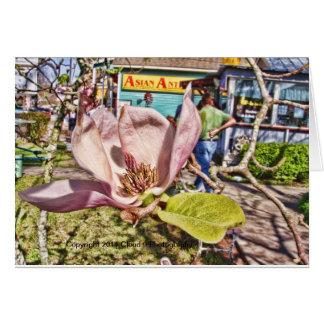 Rosa japanische Magnolie Grußkarte