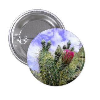 Rosa Kaktus-Blume