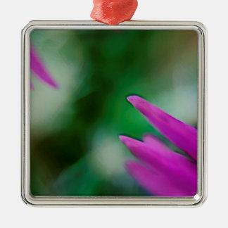 Rosa Kaktus-Blumenblätter Silbernes Ornament