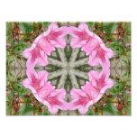 Rosa Kaleidoskop 8 der Azaleen 1E Photodrucke