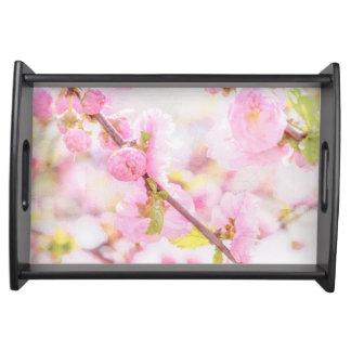 Rosa Kirschblüte-Blumen - japanische Kirschblüte Tablett