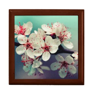 Rosa Kirschblüte, Cherryblossom, Kirschblüte Erinnerungskiste