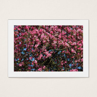 Rosa Kirschblüte (eingefaßt) Visitenkarte