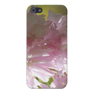 Rosa Kirschblüten iPhone 4 Fall iPhone 5 Hüllen