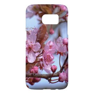 Rosa Kirschblüten-Natur