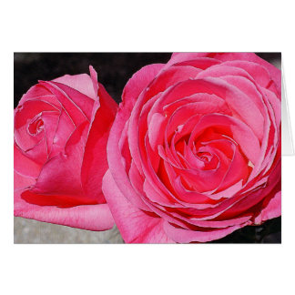 Rosa kletternde Rosen Karte
