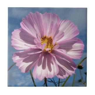 Rosa Kosmos-Blume gegen blauen Himmel Keramikfliese
