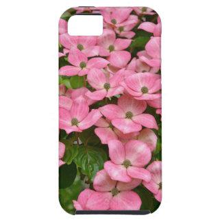 Rosa kousa Hartriegel-Blumendruck Hülle Fürs iPhone 5