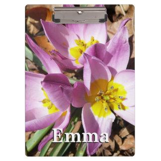 Rosa Krokus-Vorfrühling mit Blumen Klemmbrett
